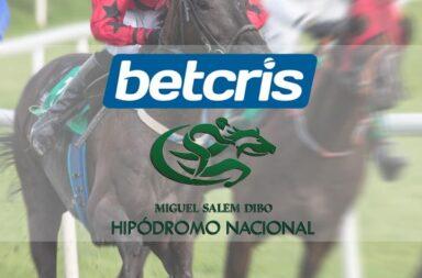 Horse Racing in Ecuador